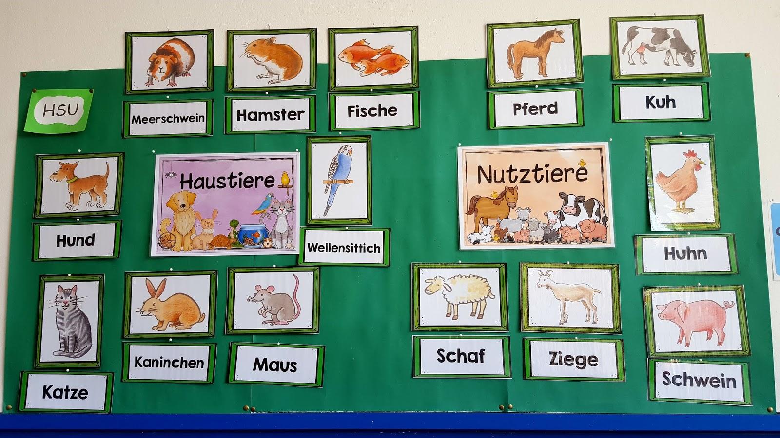 Grundschultante: Bildkarten Haustiere/Nutztiere