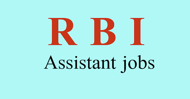 rbi-assistant-jobs