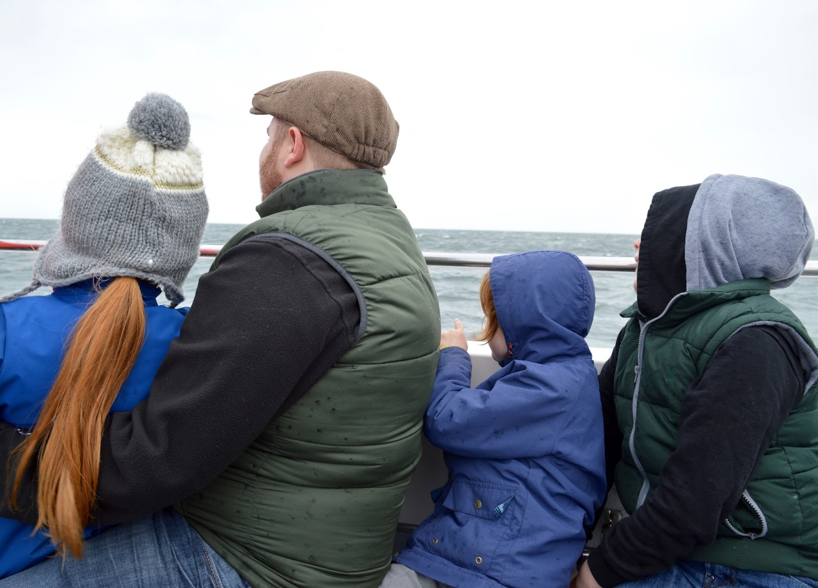 Farne Island Boat Trips with Serenity | A review and what to expect with kids - on board