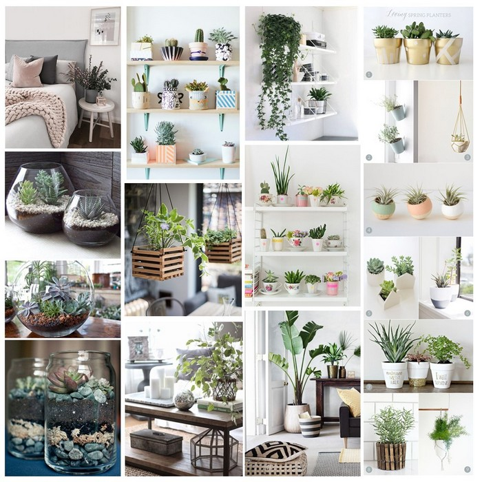 Ideas de decoraci n jardines verticales y plantas onlyness for Decoracion jardin plantas
