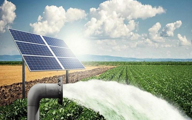 Irrigation par pompage solaire en agriculture