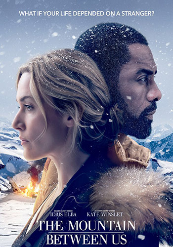 The Mountain Between Us 2017 Dual Audio 720p HDRip 600MB Poster