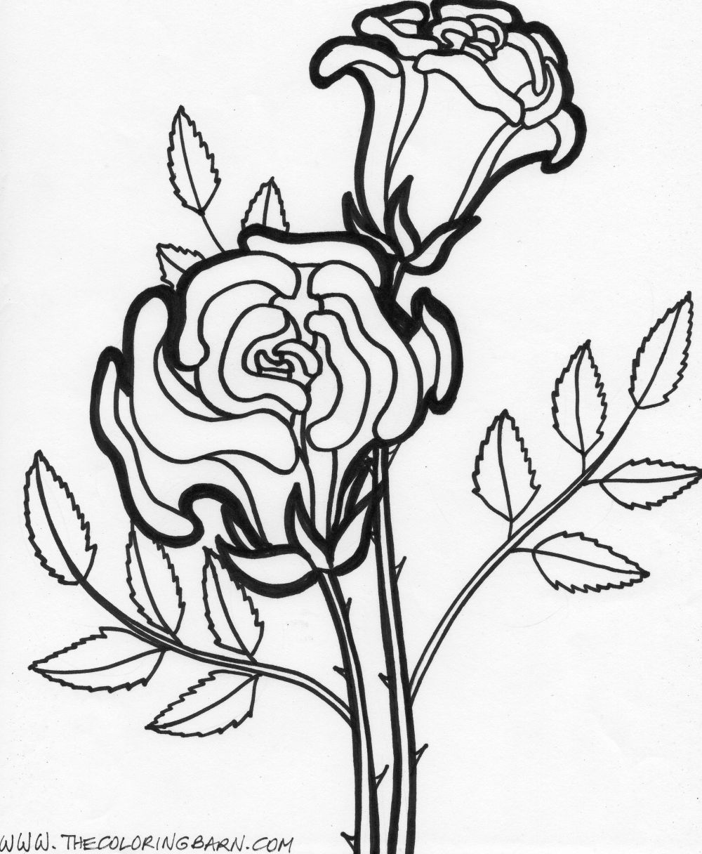 Coloring Pages Worksheets: Simple Flower Coloring Pages ... | colouring pages flowers printable