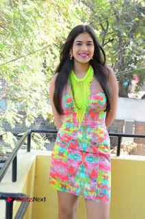 Telugu Actress Prasanna Stills in Short Dress at Inkenti Nuvve Cheppu Press Meet Stills  0060.JPG