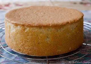 http://www.delectablehodgepodge.com/recipes/spongecake-g.html