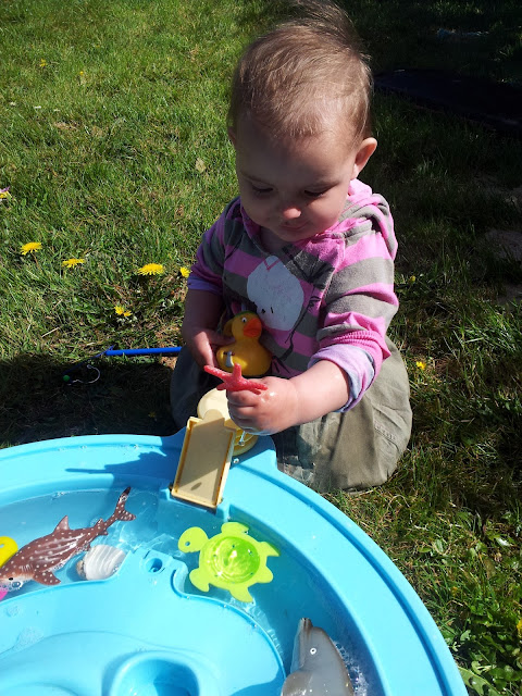 Matilda Mae's Messy Play Water Table Seaside Animals star fish