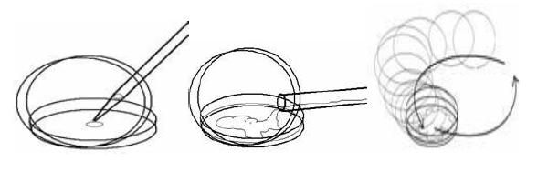 Proses inokulasi bakteri, penuangan media dan penghomogenan larutan