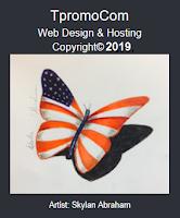 Web Design by TpromoCom (image)