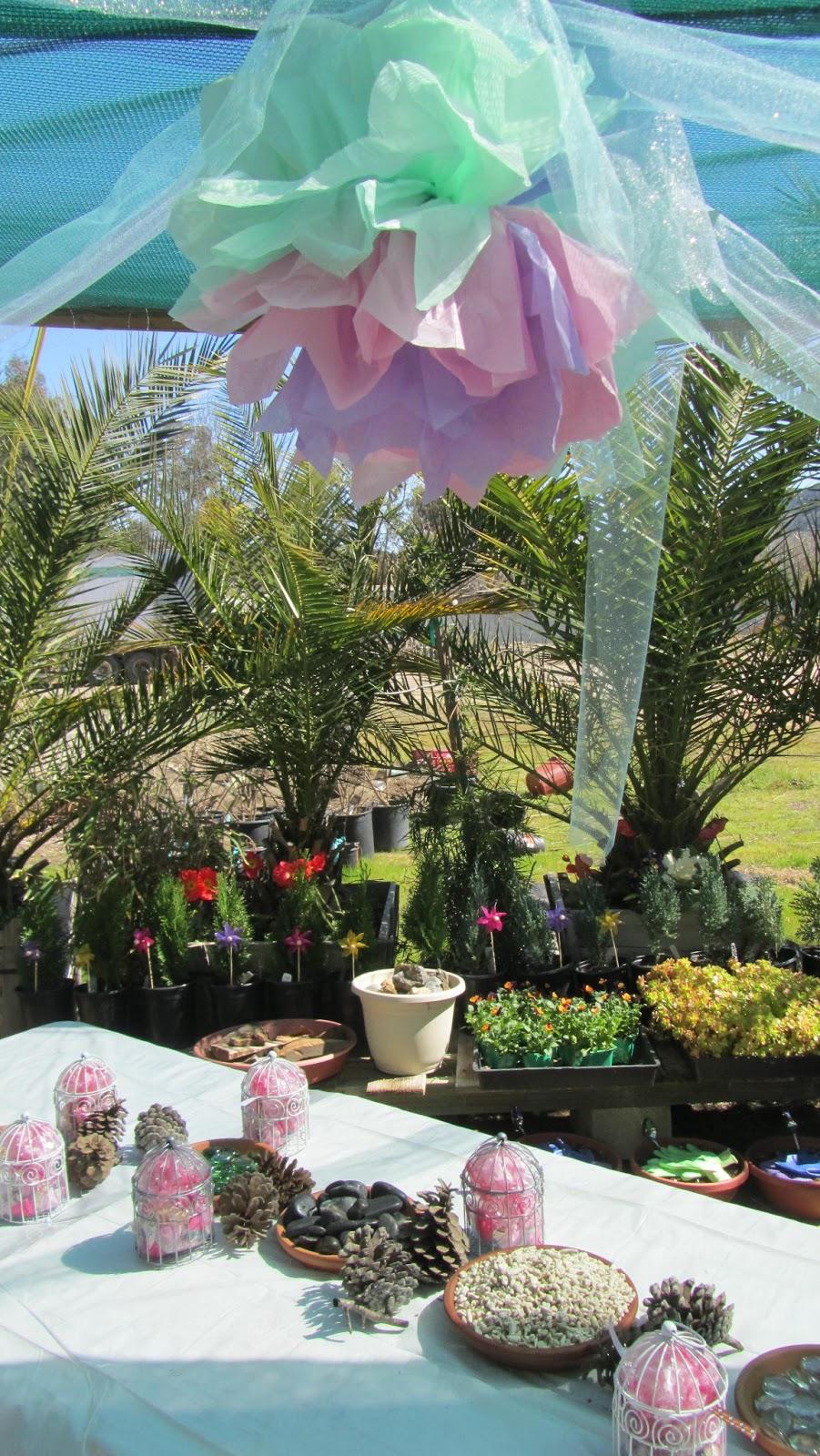 Enchanted Garden: Valley Center Nursery: Enchanted Fairy Garden Birthday Party