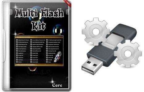 check flash format tool تحميل