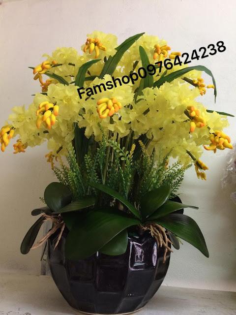 Hoa da pha le tai Vinh Tuy