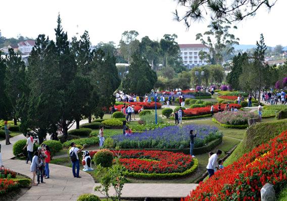 Đà Lạt tết 2017 ngắm vườn hoa