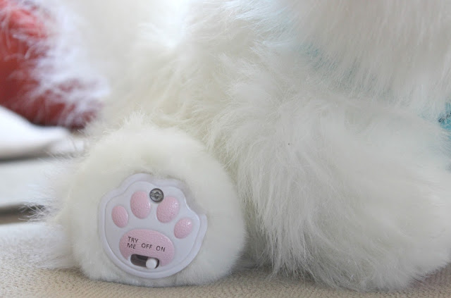 A review of the Little Live Pets Cuddles My Dream Kitten