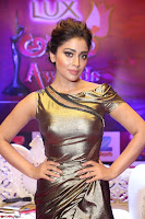 Shreya Saran in Golden Tight fit LegSplit Gown at Zee Telugu Apsara Awards 2017 04.JPG