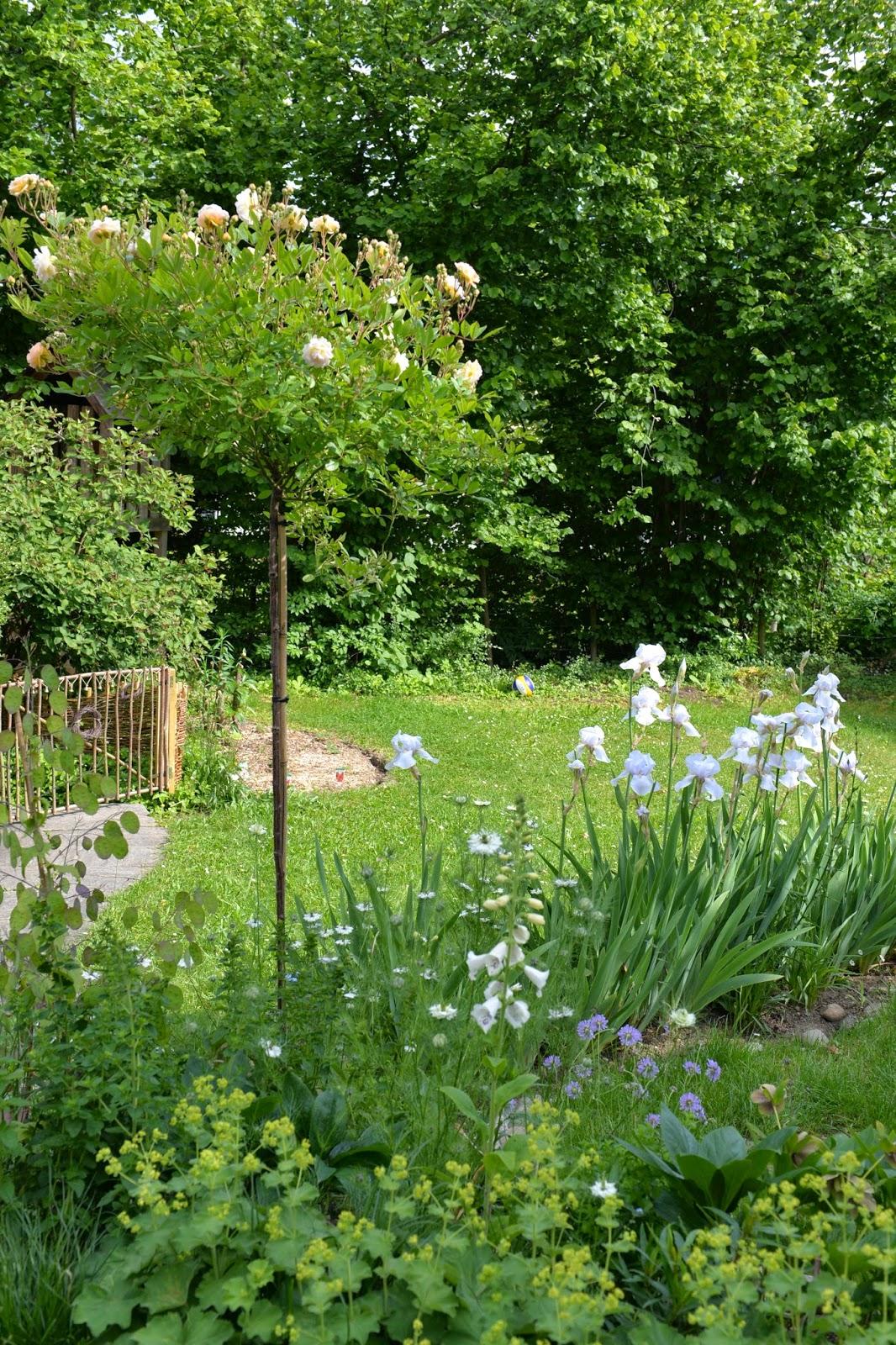 Wwwtüpflich Der Weisse Garten