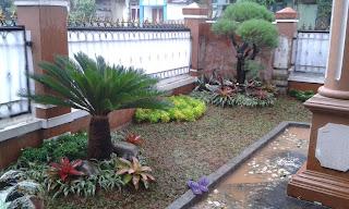 Tukang Taman di Cawang