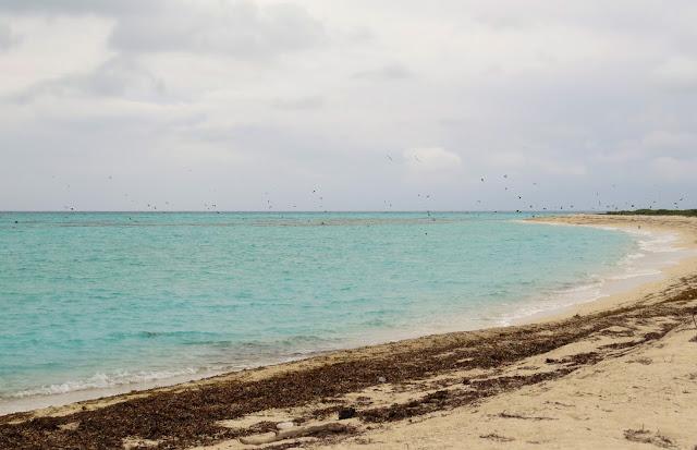 Dry Tortugas, Florida
