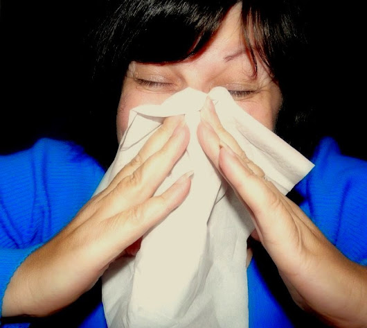 OMG, Stop Sniffling And Use a Tissue! <br> (The Symphony of {Sniffs})