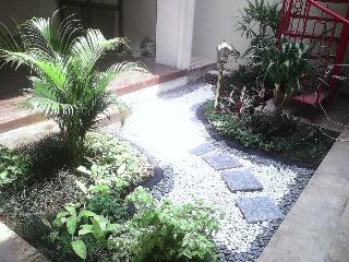 tukang taman cileungsi design taman