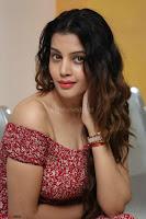Diksha Panth in a Deep neck Short dress at Maya Mall pre release function ~ Celebrities Exclusive Galleries 013.JPG