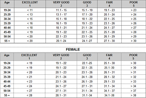 body fat percentage according to bmi