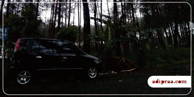 Si Motu Ireng parkir di dekat Hutan Pinus | adipraa.com