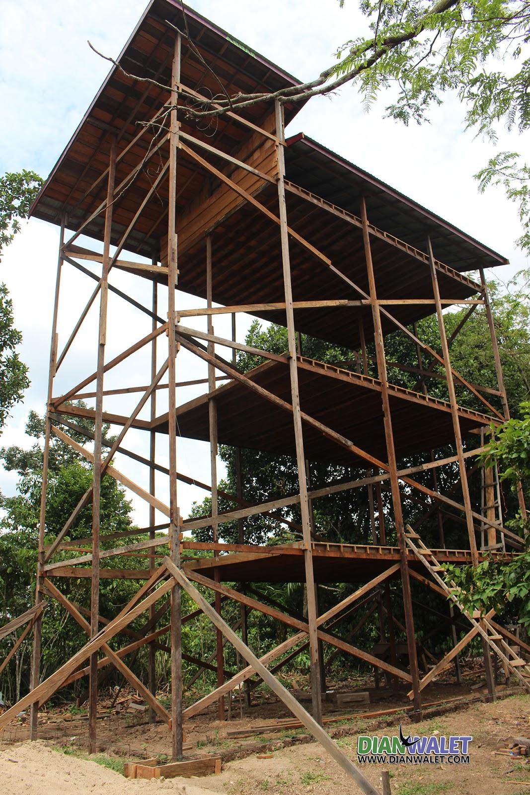99+ Contoh Denah Rumah Walet Dari Kayu Terpopuler