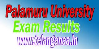 Palamuru University B.Ed Exam Results
