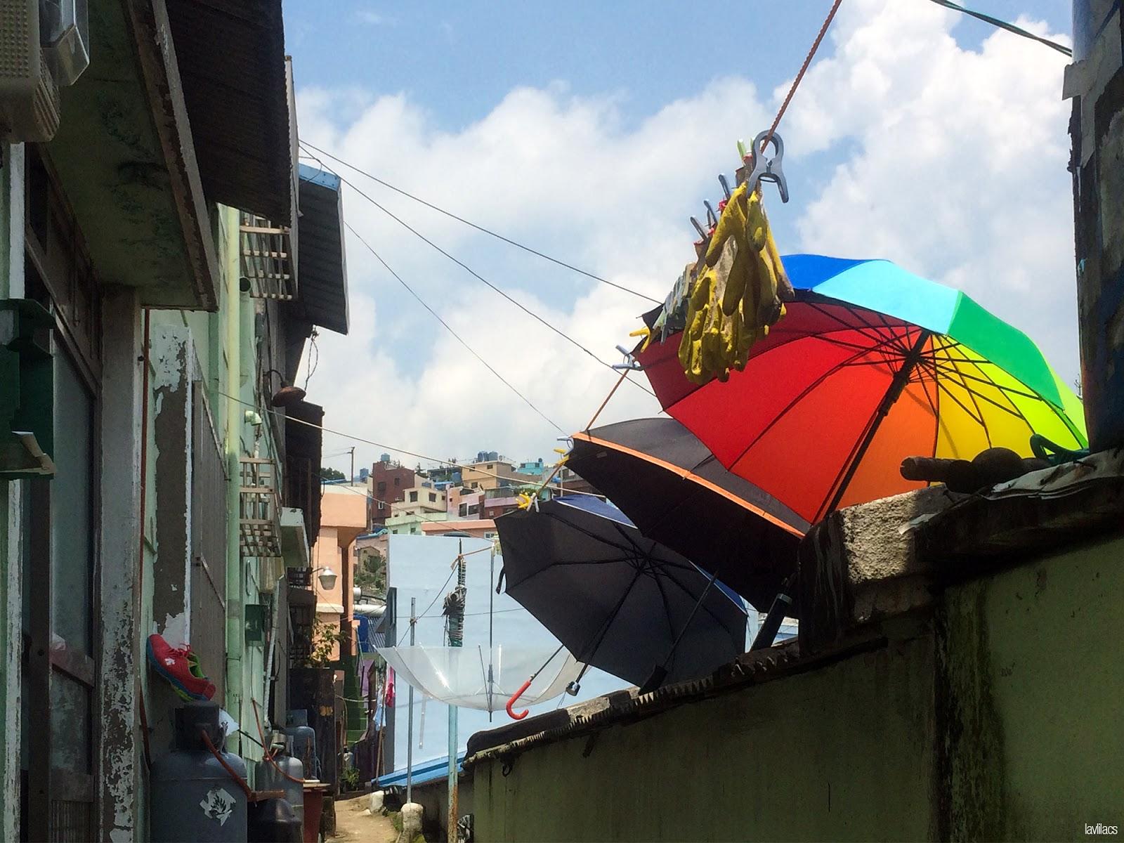 Seoul, Korea - Summer Study Abroad 2014 - Gamcheon Culture Village colorful umbrellas