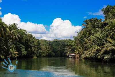 bacs meet 2012 tubigon bohol latest