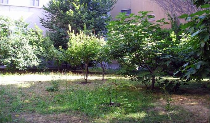 giardinaggio sentimentale A Milano una piccola porta e