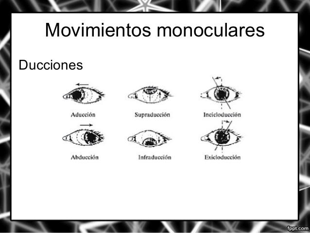 Test empleados en optometria : DUCCIONES Y VERSIONES