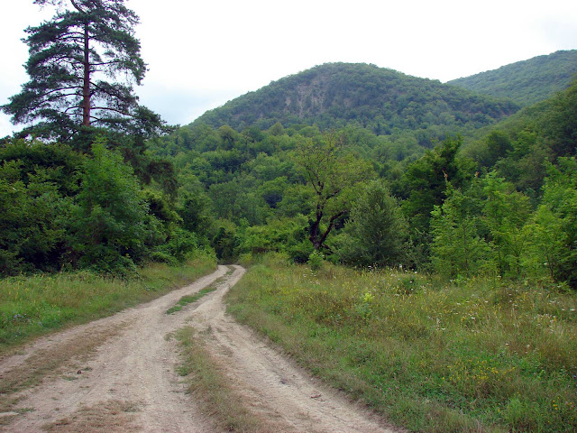 Долина реки Тхаб возле села Михайловский перевал