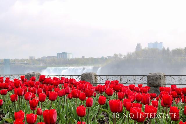 48 No Interstate back roads cross country coast-to-coast road trip Niagara Falls Canada New York American Falls tulips