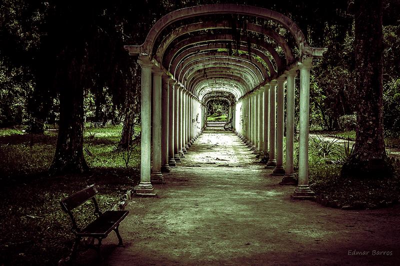 Jardín Botánico Río de Janeiro