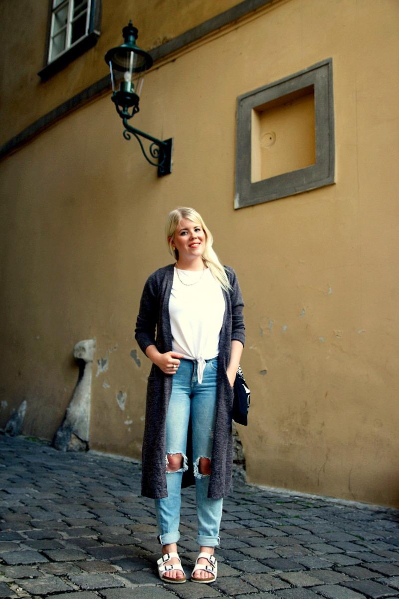 österreichische bloggerin