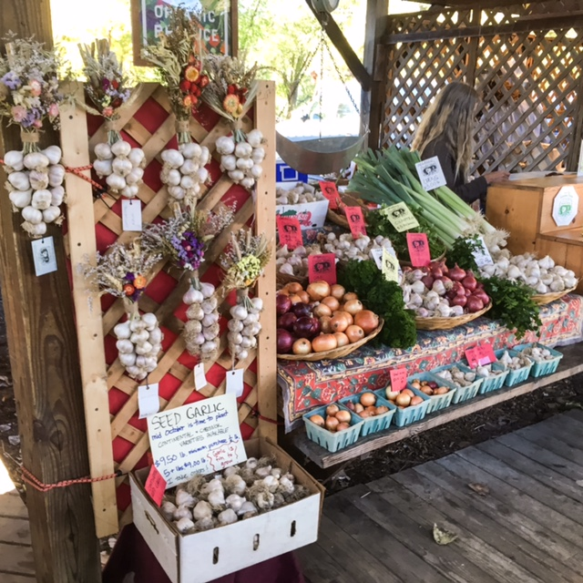 You are greeted with garlic, onions and other seasonal vegetables.