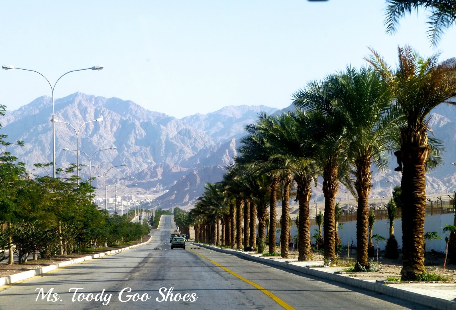 Driving through Jordan to Petra --- Ms. Toody Goo Shoes