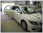 White Car WINDOW TINT