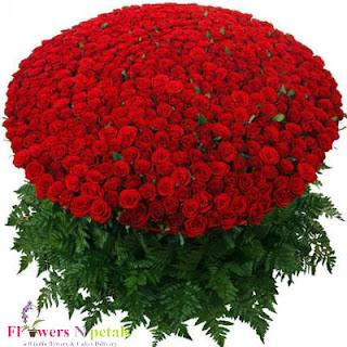 opole kwiaciarnia