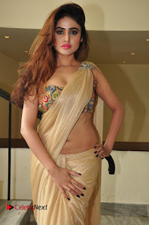 Actress Sony Charishta Pictures in Saree at Aura Fashion Exhibition Launch  0026.JPG