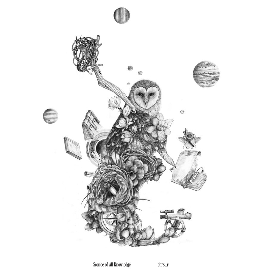 01-Owl-Source-Of-All-Knowledge-Chris-R-Detailed-Drawings-Involving-Animals-www-designstack-co