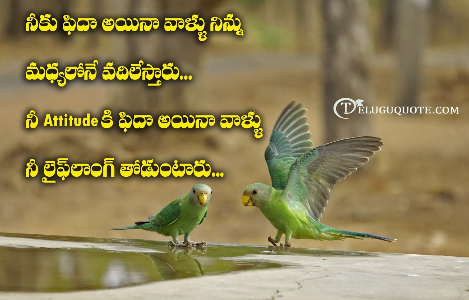 Telugu love quotations free download