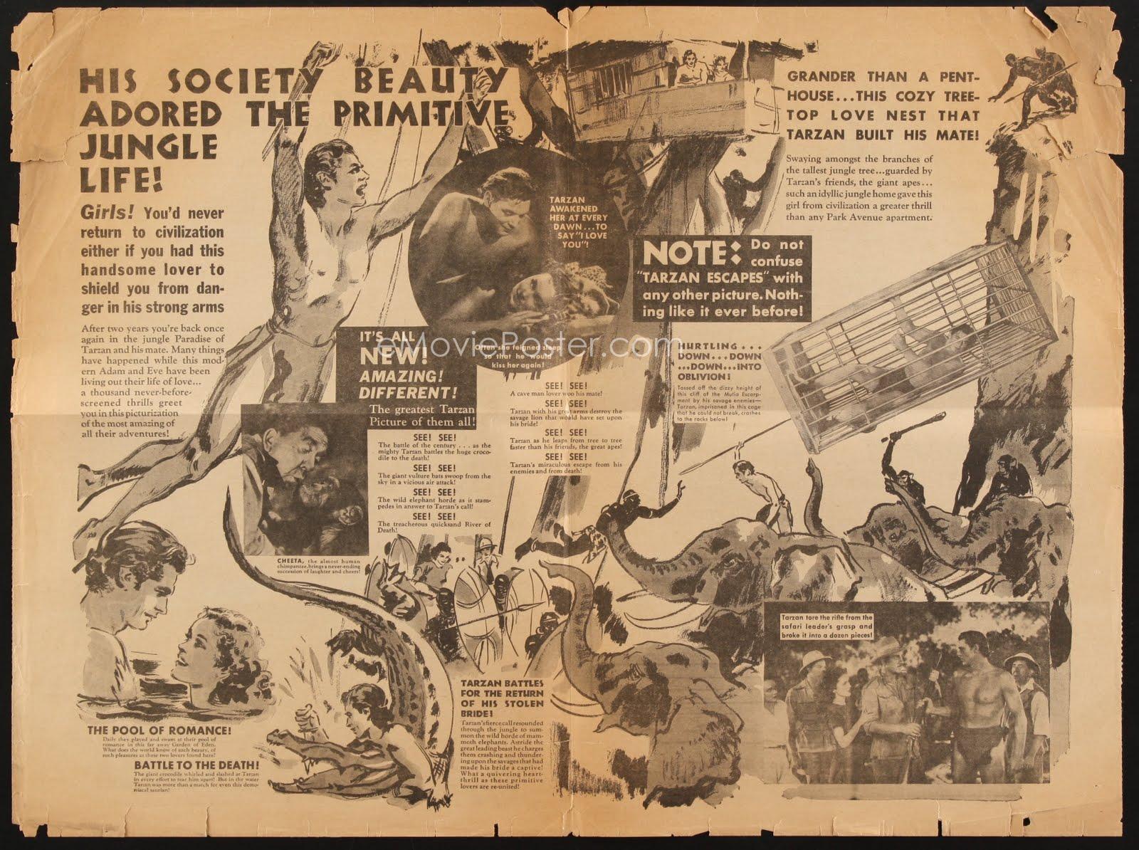 Café Roxy: Tarzan Escapes - Bat Bait