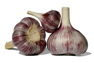 MANY WAYS TO BENEFIT FROM THE HEALING POWER OF GARLIC