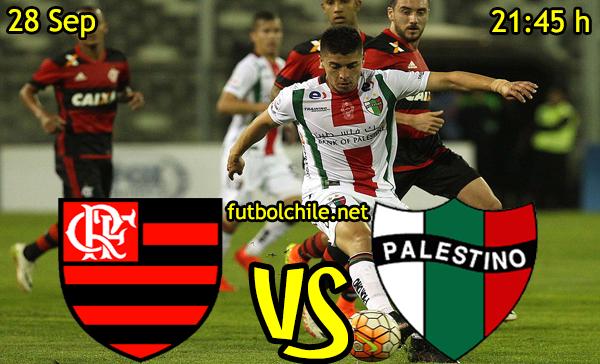 Flamengo vs Palestino