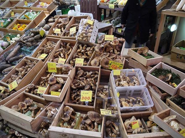 Autumn Foods in Japan