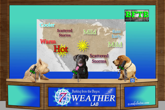 BFTB NETWoof Weather forecast map