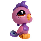Littlest Pet Shop Multi Pack Cockatoo (#1650) Pet