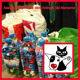http://animalsdelmaresme.blogspot.com.es/2016/10/taps-solidaris-pels-gats-de-premia.html